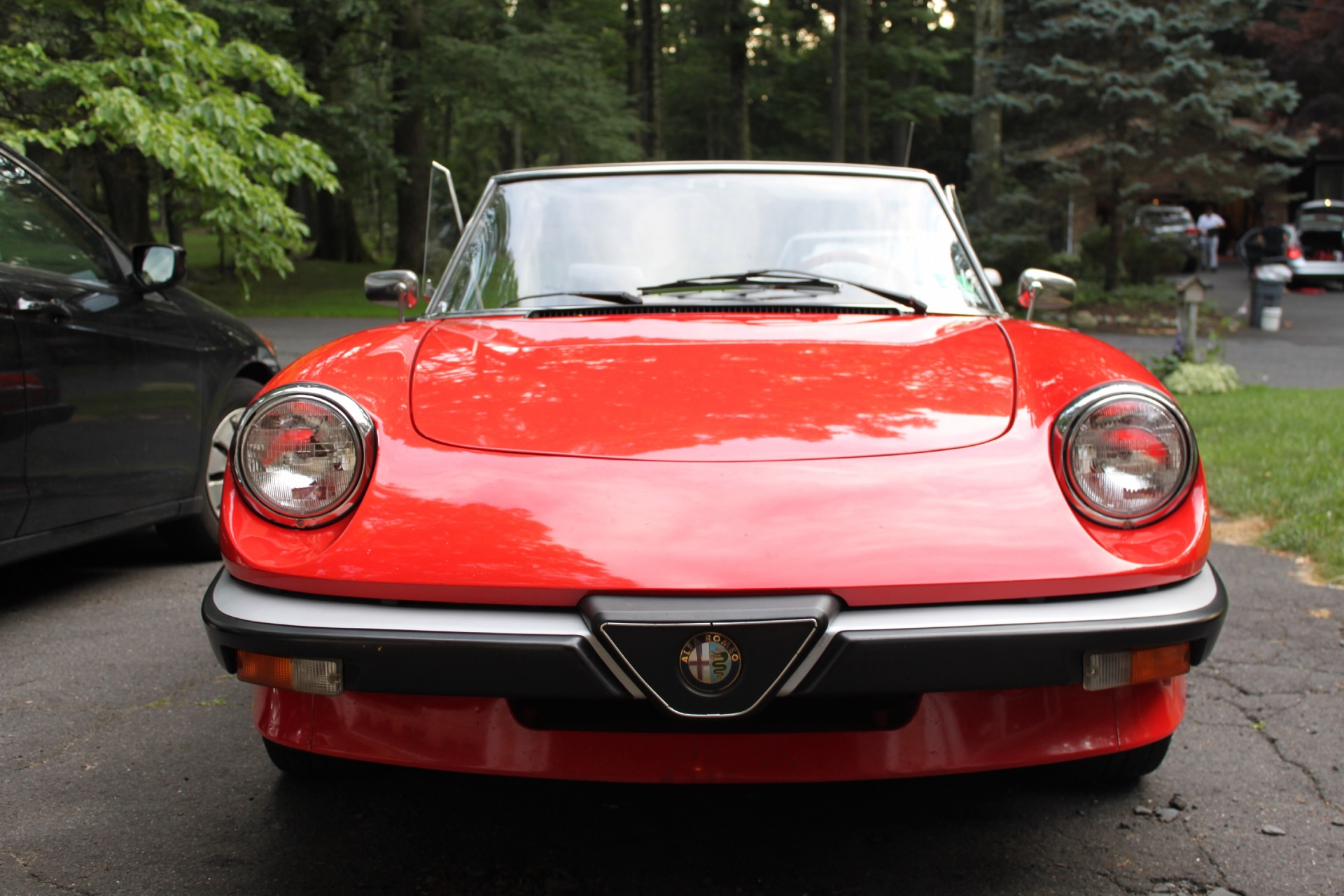 1985 alfa romeo spider stock 2313 126821 for sale near new york ny ny alfa romeo dealer. Black Bedroom Furniture Sets. Home Design Ideas
