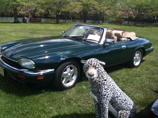 Used-1995-JAGUAR-XJS