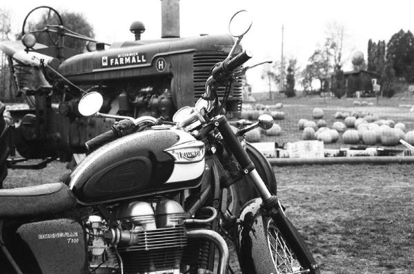 Used-2010-Triumph-Bonneville