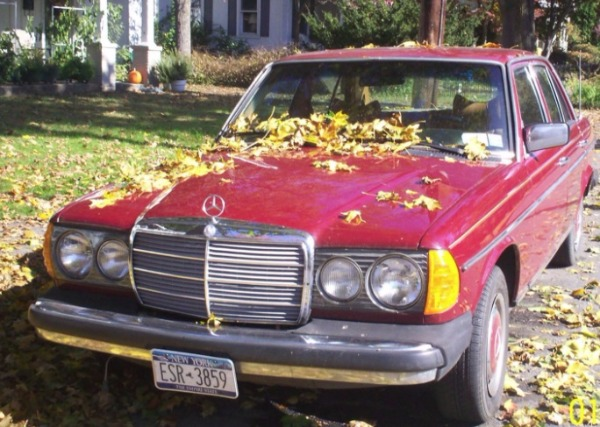 Used-1979-Mercedes-Benz-300-D